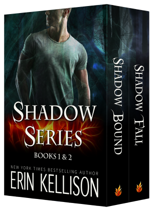 Shadow Series cover